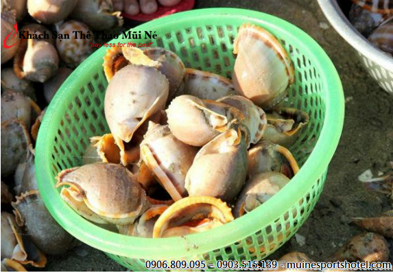 This crabs and snails basket take only 150,000 VND. Buy now!